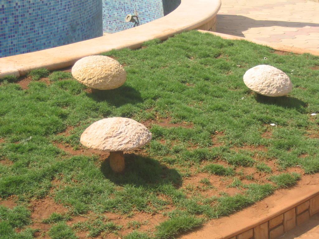Mittal Stone